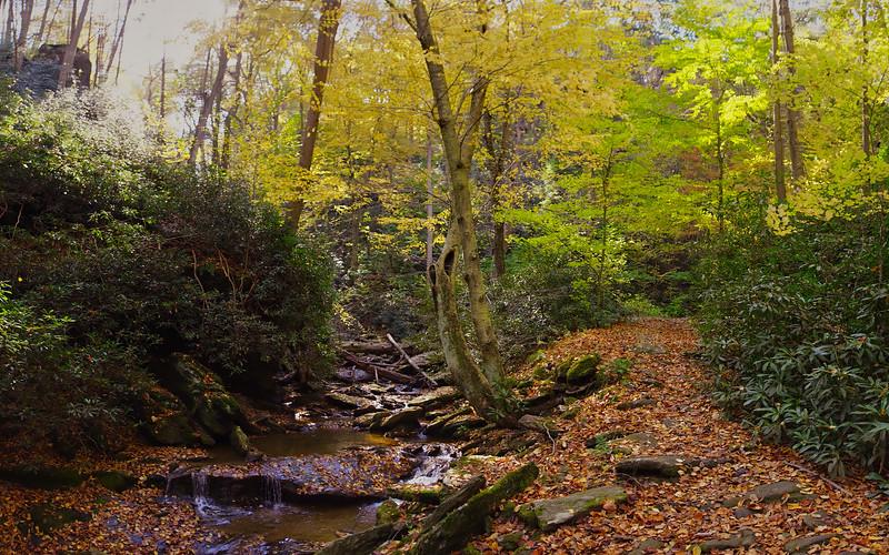 1083 - Autumn 2016 - Mason Dixon Trail Pano (p).jpg