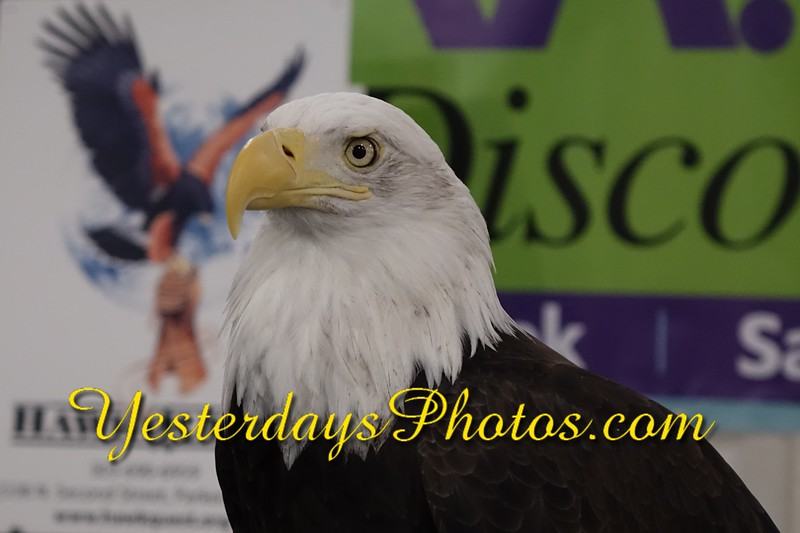 YesterdaysPhotos.com-DSC02909.jpg