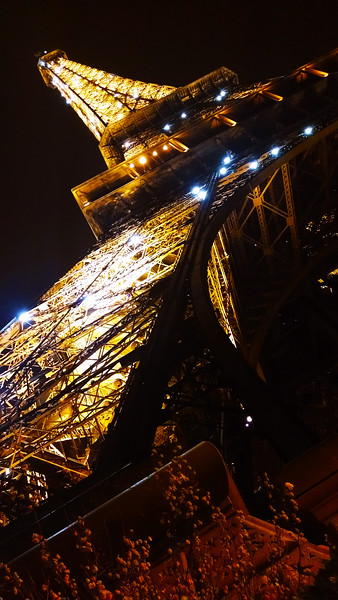 Paris-EifelTower-Flashing-230032086.jpg