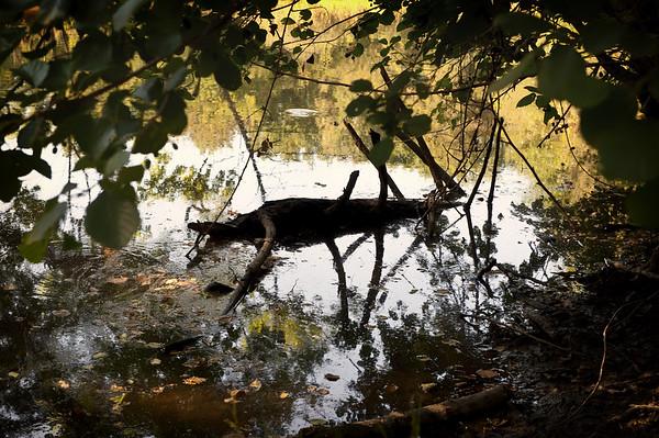 Bagnoles de l'Orne entre lac et rivière