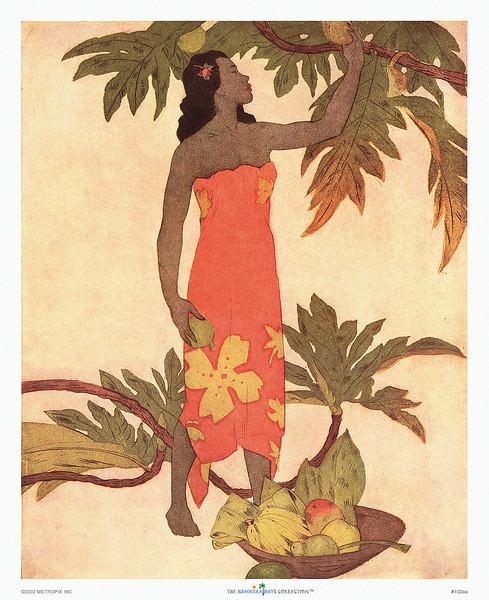 102: John Kelly: 'Breadfruit' Ca. 1945