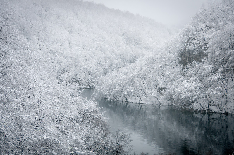 Snow-covered canopy in Plitvice Lakes National Park - Croatia