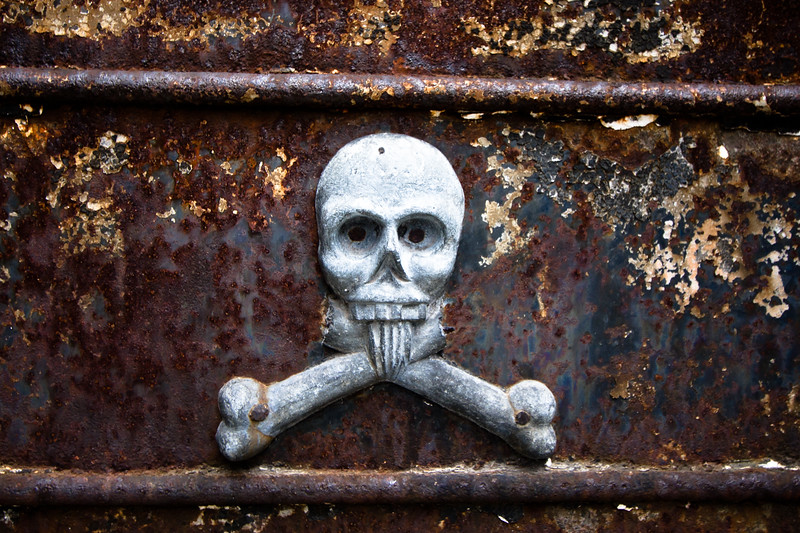 recoleta-skull_5735739296_o.jpg