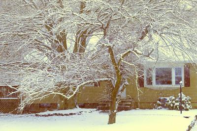 The Last Snowstorm