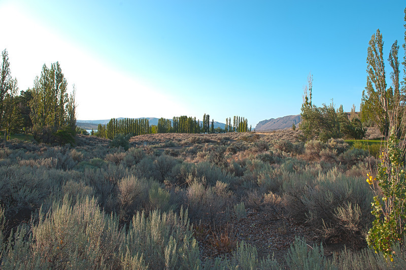 Morning view east from our campsite at Wanapum State Park.