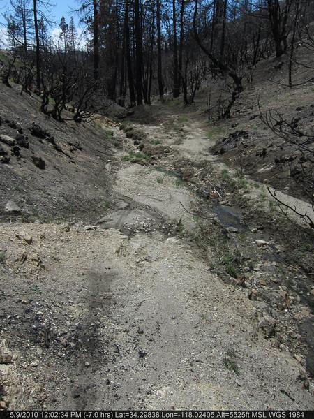 082-Vetter mtn Trail.JPG