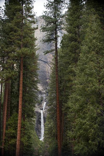 Yosemite  02.14