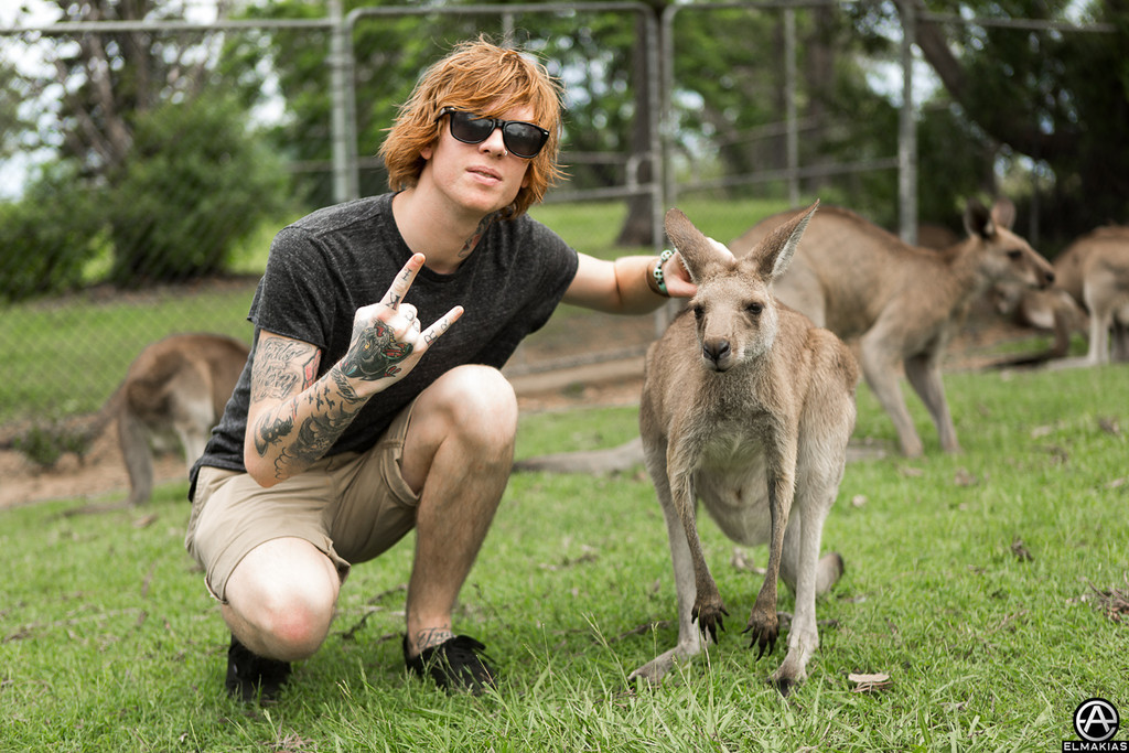 Rock out with marsupials