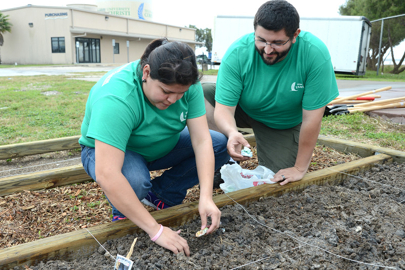 students-work-to-plant-seeds-in-the-newly-constructed-community-garden-on-campus_13267791923_o.jpg