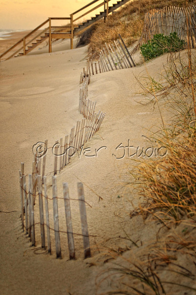 Outer Banks, NC - Dunes & Sea Oats