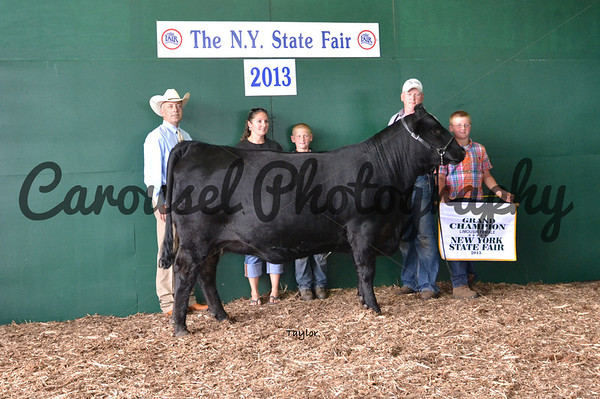 2013-NYSF-Limousin-Backdrop