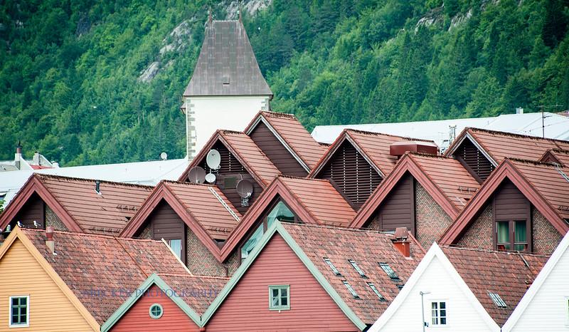 Bergen Roofs.jpg