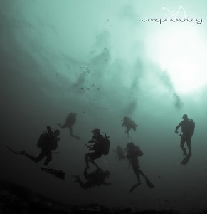 Divers in Sodwana Bay, South Africa
