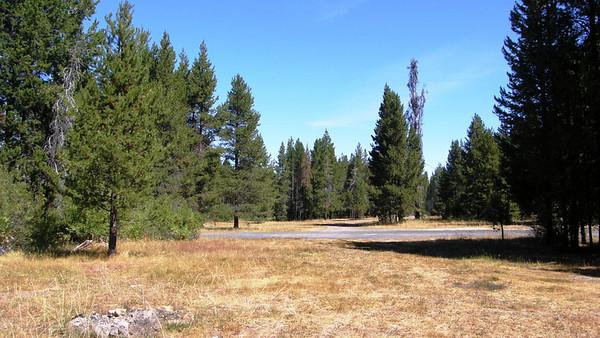 Elk Camp