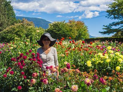 Ferncliff Gardens