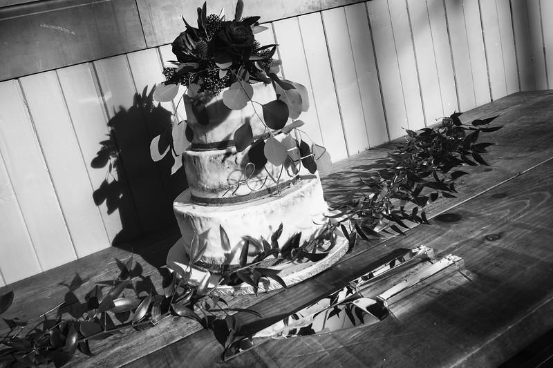 Mannion Wedding - 605.jpg