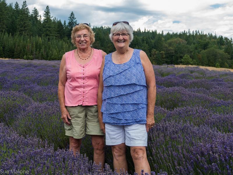 07-15-2018 A Day at the Lavender Farm-4.jpg