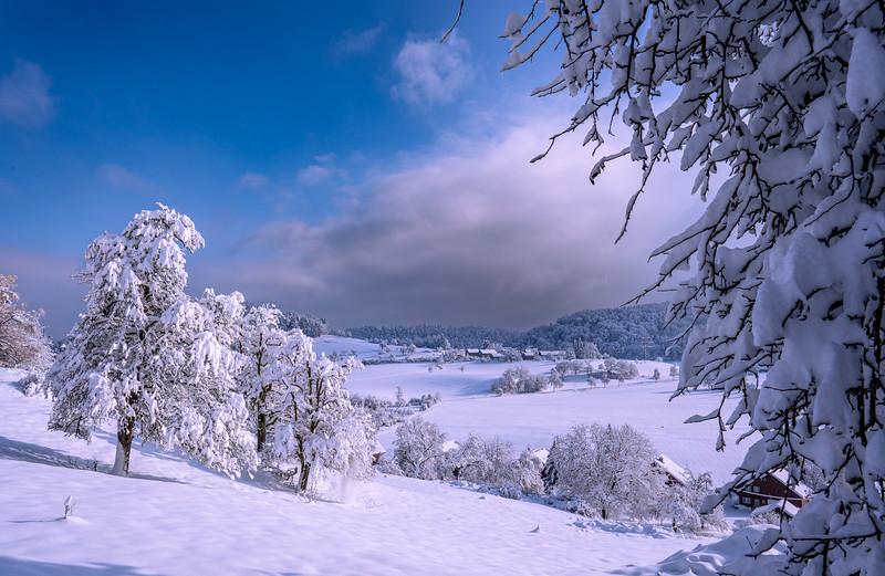 Winterthur-Winter-04349.jpg