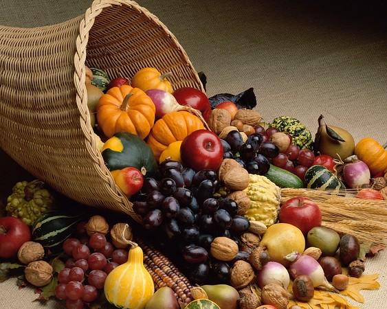 thanksgiving::1