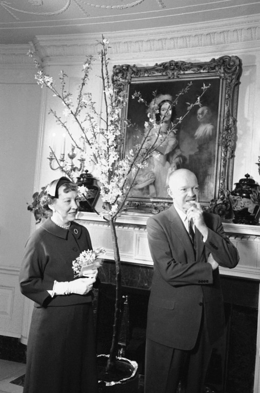 . U.S. President Dwight Eisenhower and Mrs. Mamie Eisenhower presented these studies during a brief ceremony in the White House Diplomatic Reception Room, April 3, 1959 in Washington. The occasion was the presentation to them of the nearby blooming Japanese cherry tree by officials of the Washington Cherry Blossom Festival. Twelve of these trees will be sent to the Eisenhowers? Gettysburg, Pa., farm. It is a painting of Mrs. Abraham Van who served as official White House hostess during part of the presidency of her father-in-law, Martin Van Buren. (AP Photo)