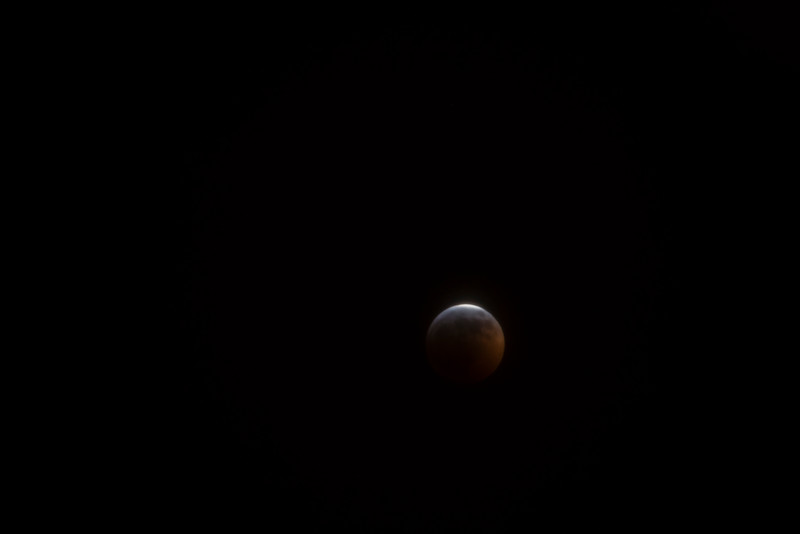 Almost Total Eclipse of the Moon