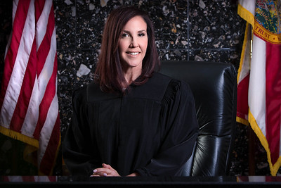 Judge Dana M Santino