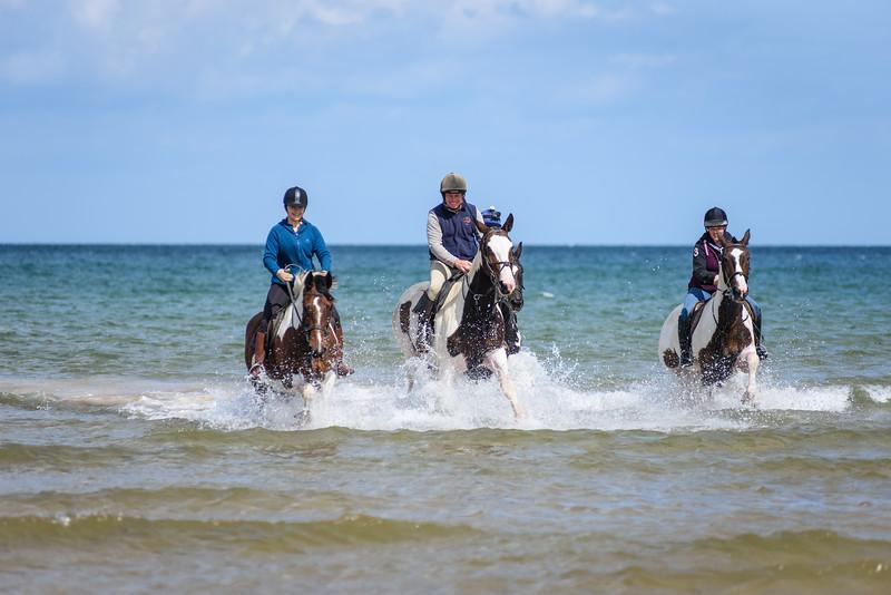Holkham Beach Ride August 2019 (51).jpg