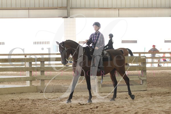 Walk/Trot Equitation 3 - 5