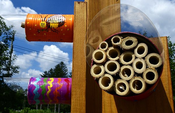 PollinatorGarden-SO-090618_0474