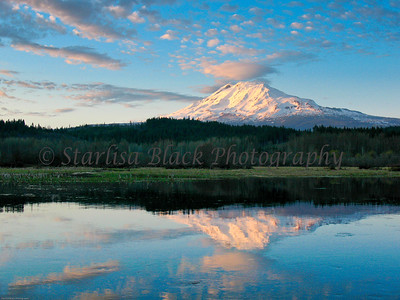 Trout Lake & Mount Adams