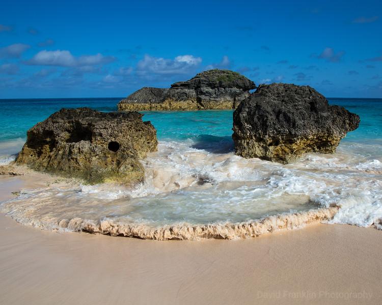 1705-Bermuda-1102.jpg