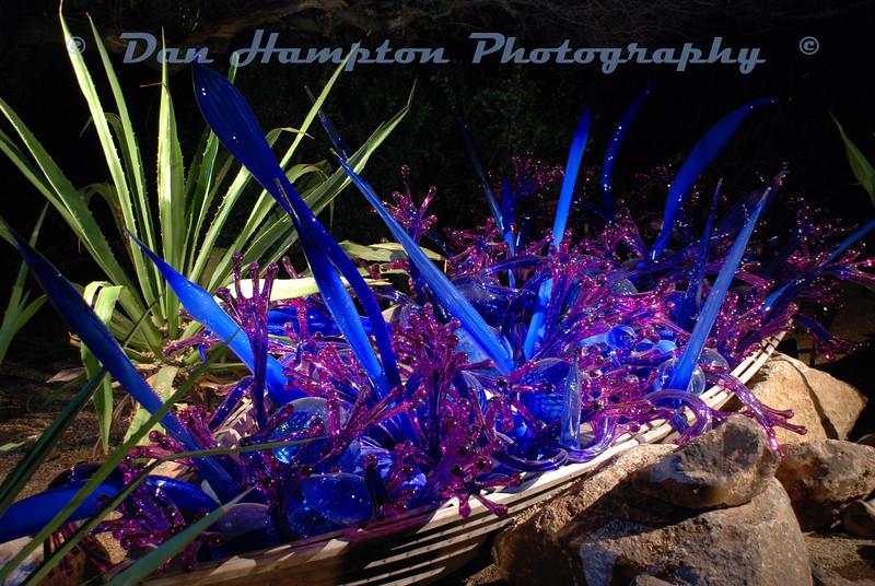 Desert Botanical_277.JPG