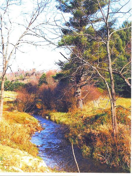 The nearby Lick Creek runs thru the property.