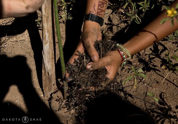 Costas Verdes Conservation