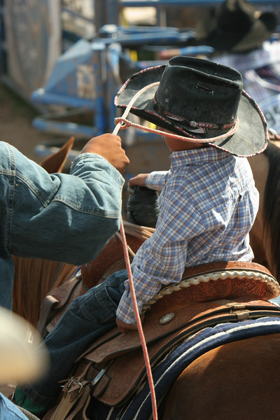 Rodeo  1141.jpg