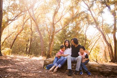 The Lo Family 2016 Mini-Session