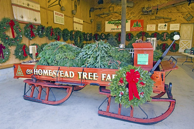 Christmas Tree Harvest @ The Old Homestead Tree Farm - Strohls Valley Rd, Lehighton, PA.