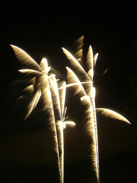 2005_1028tootingfireworks068_edited-1.JPG