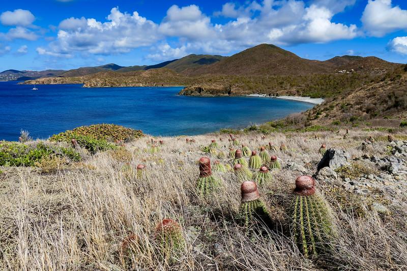 Virgin Islands National Park - Ram Head Trail  (2.6 miles; d=3.40)