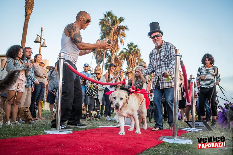 2015 Dog-O-Ween