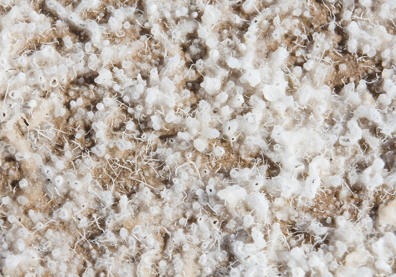 Badwater-salt-surface-Death-Valley-2017.jpg
