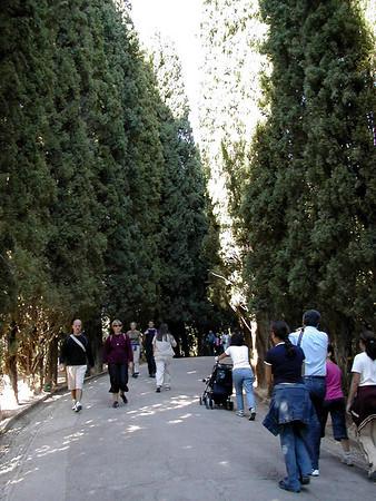 Honeymoon Day 6 - Alhambra and Generalife