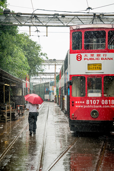hk trams74.jpg