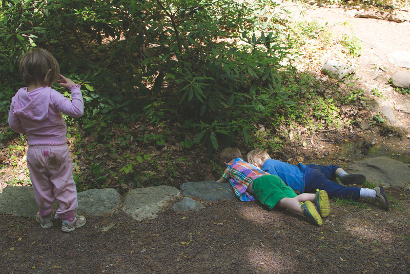 lyo hike kids (1 of 1).jpg