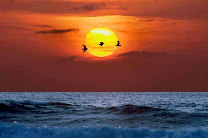 iwa sunset DSC_692611a.jpg