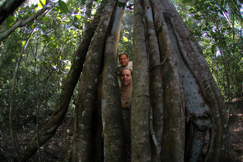 Jon and Cheryl inside of a hallow tree in the Periyar Wildlife Preserve