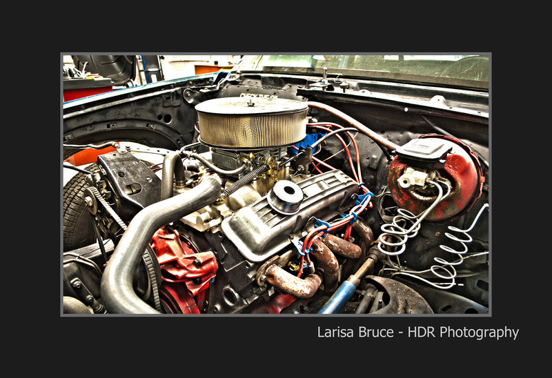 HDR-_larisa_Bruce.jpg
