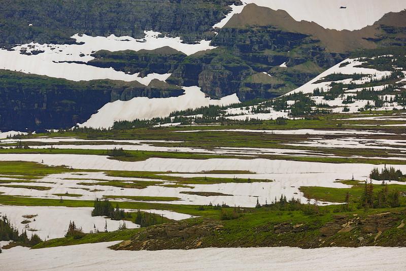 2014_07_15 Glacier National Park 034.jpg