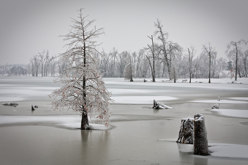 Jacobson Park During Snow Storm