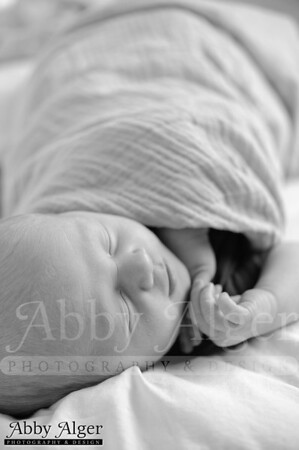 Newborn Posing Workshop-Erin-Langford